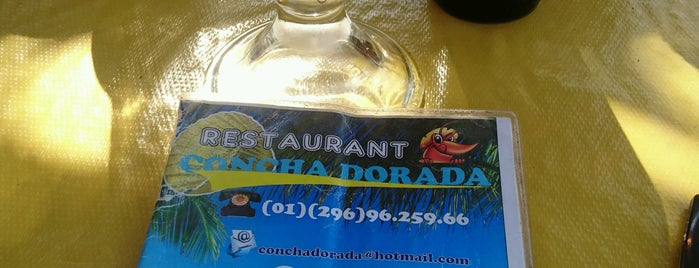 Concha dorada is one of Chachalacas.