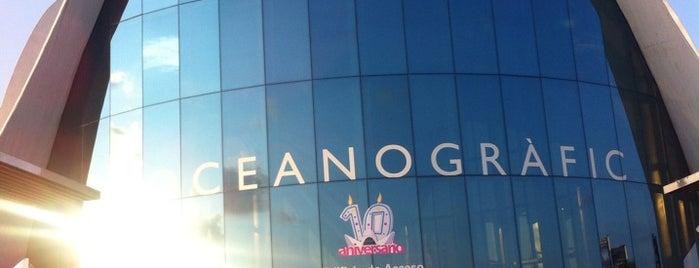 L'Oceanogràfic is one of スペイン.