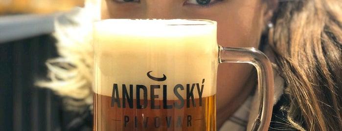 Andělský pivovar is one of สถานที่ที่ Kirill ถูกใจ.