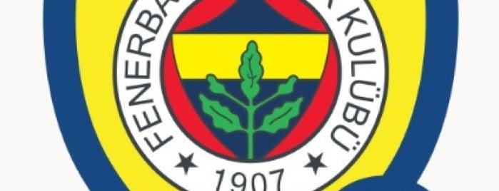 Fenerbahçe SK Faruk Ilgaz Tesisleri is one of Fenerbahçe SK Badge.