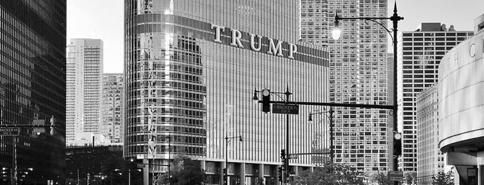 Trump Tower Dog Park is one of Guide to Chicago's best spots.