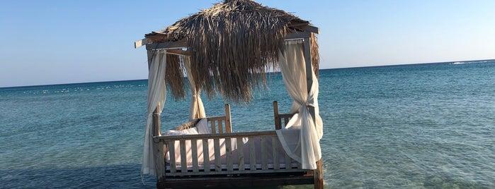 Dharma Beach Club is one of Tempat yang Disimpan Berkan.