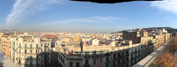 The 15 Best Hotel Bars In Barcelona