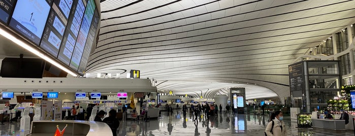 Beijing Daxing International Airport (PKX) is one of Airports Visited.