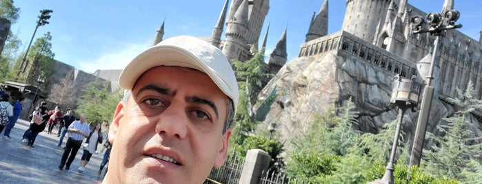 Harry Potter and the Forbidden Journey is one of สถานที่ที่ Stephania ถูกใจ.