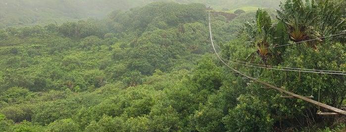 Terre des 23 Couleurs is one of Tempat yang Disukai Onur.