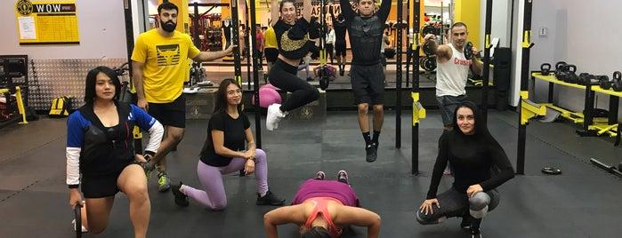 Gold's Gym is one of Aylin'in Beğendiği Mekanlar.
