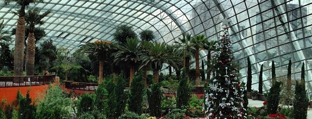 Flower Dome is one of Singapore Place.