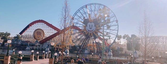 Incredicoaster is one of Tempat yang Disukai Alberto J S.