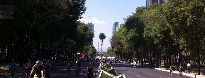 Corredor Reforma is one of musts de méxico lindo.
