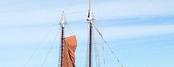 Boston Harbor is one of Boston.