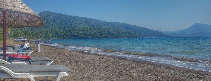 Angora Restaurant&Motel&Camping is one of Kamp Alanları.