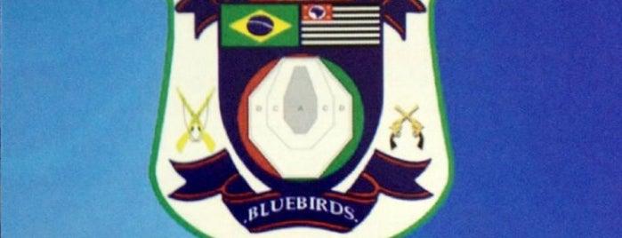 Clube de tiro Azulão is one of Tempat yang Disukai Flávia.