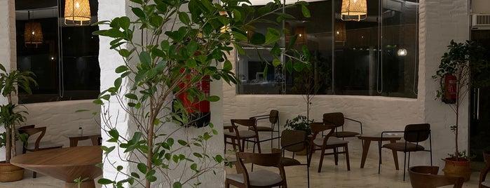 The Cactus is one of Posti che sono piaciuti a Amal.