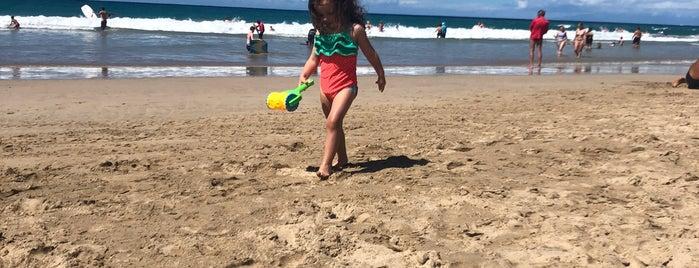 Hāpuna Beach State Recreation Area is one of Lugares favoritos de Liza.
