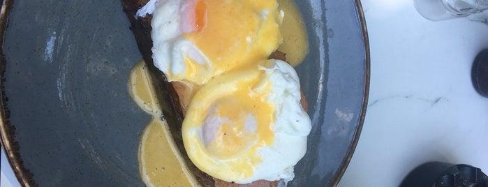 A Bit Of Eggo is one of Semi.