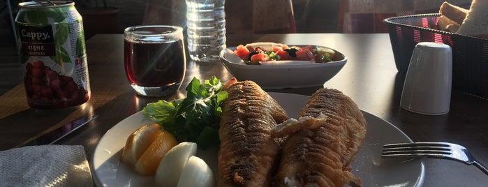 Nihat'ın Yeri Balık Restaurant is one of Trakya ve Marmara.