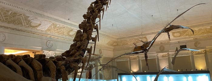 National Taiwan Museum Natural History Branch is one of Things to do - Taipei & Vicinity, Taiwan.