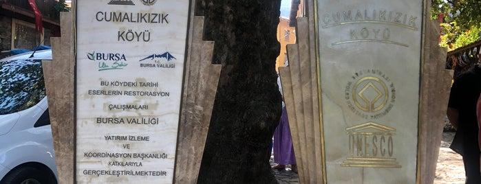 Cumalıkızık Meydan is one of Bursa.