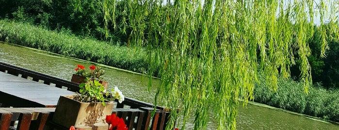 Riva Göl Çiçek Restorant is one of Posti che sono piaciuti a Zeynep.
