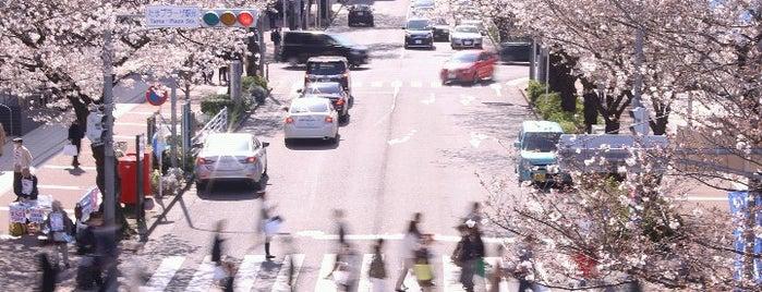 たまプラーザ駅前交差点 is one of Tempat yang Disukai Shinichi.
