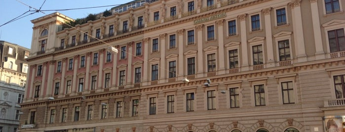 Palais Ephrussi is one of The Vienna Project.
