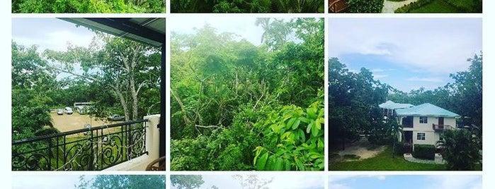 Black Orchid Resort Belize is one of Crystal : понравившиеся места.