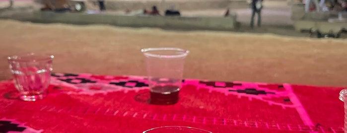 Sharm Bedouin Tent Safari is one of Lugares favoritos de Moe.