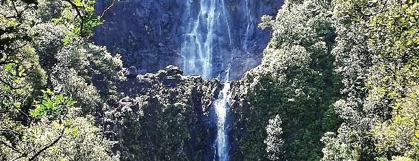 Wairere Falls is one of Nova Zelândia.