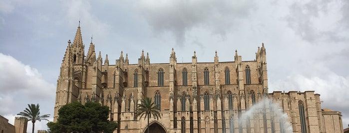 Catedral-basilica De Santa Maria De Mallorca is one of Mallorca List.