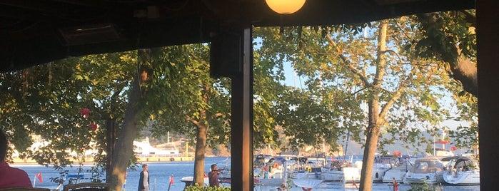 Artaki Marina Steakhouse & Fish is one of Gülay: сохраненные места.
