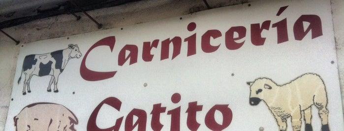 Carniceria Gatito is one of Yoryo : понравившиеся места.