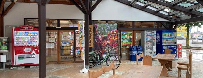 道の駅 砺波 is one of Lugares favoritos de 高井.