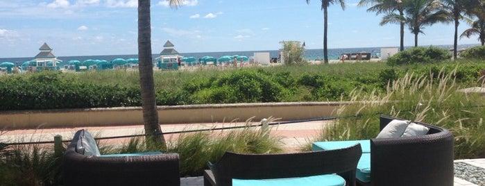 DiLido Beach Club is one of Michael: сохраненные места.