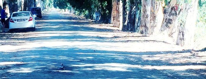 Aşıklar Yolu is one of muğla 14.