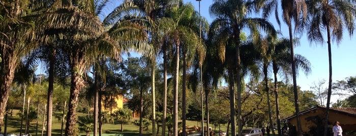 Hotel Fazenda Duas Marias is one of Fábio : понравившиеся места.