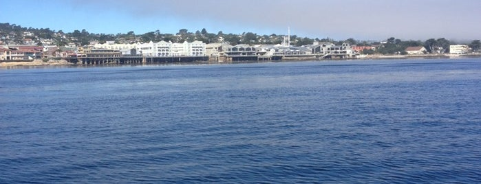 The Pacific Ocean is one of HWY1: Santa Cruz to Monterey/Carmel.