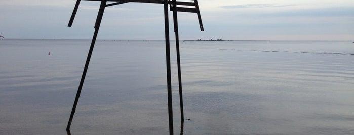 Тайполовский залив is one of Posti salvati di Aleksey.