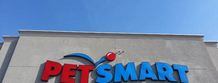 PetSmart is one of Joe : понравившиеся места.
