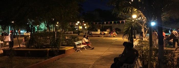 Parque de la candelaría is one of Mexico ••Spotted••.