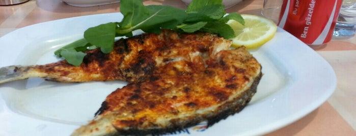 Karsu Et ve Alabalık Restaurant is one of สถานที่ที่ Elif ถูกใจ.