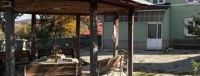Bayat is one of Kütahya | Merkez Köyler.
