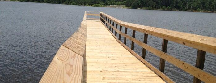 Falls Lake State Recreation Area is one of North Carolina.