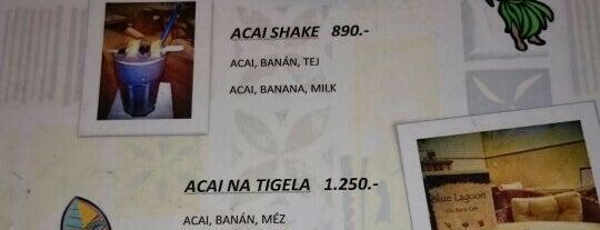 Blue Lagoon Tiki Bar & Café is one of Kézműves - Kis főzdés sörök.