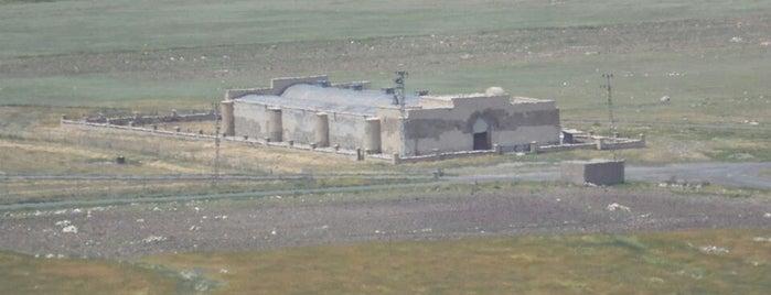 Ejder Kervansaray is one of สถานที่ที่บันทึกไว้ของ Oğuz Serdar.