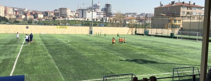 Fenerbahçe SK Fikirtepe Tesisleri is one of İstanbul Stadyum ve Futbol Sahaları.