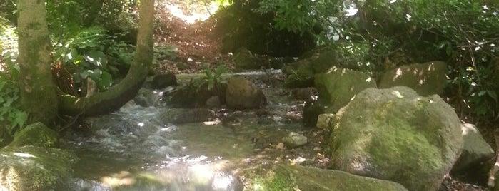 Çamlıca is one of Tempat yang Disimpan Ilkay.