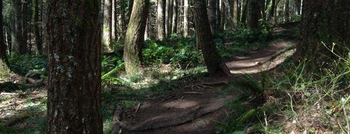 L.L. Stub Stewart State Park is one of Zivit 님이 좋아한 장소.