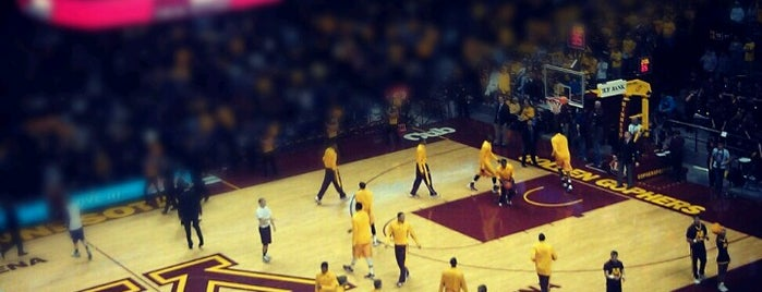 Williams Arena is one of Sporting Venues....
