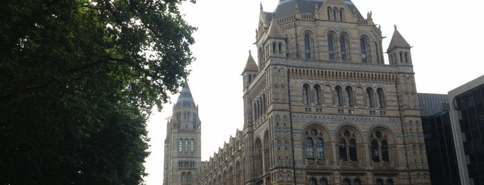 Natural History Museum is one of London, UK.